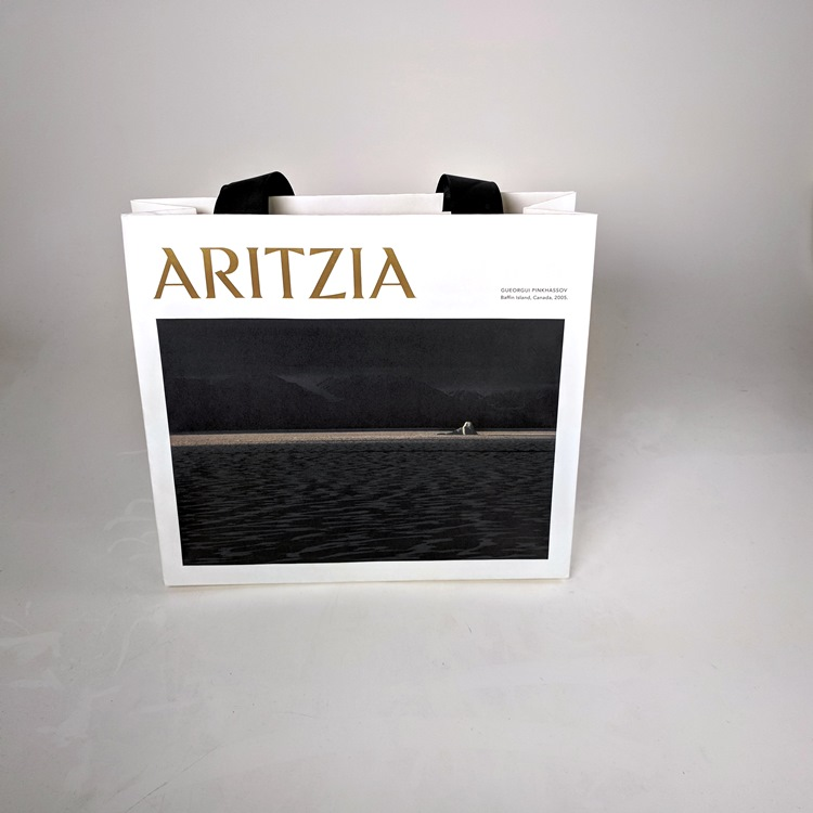 Aritzia Holiday Mini Shopper with Black Ribbon Handle